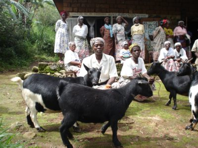 women goat keepers - 2